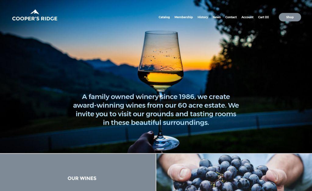 web design & ecommerce